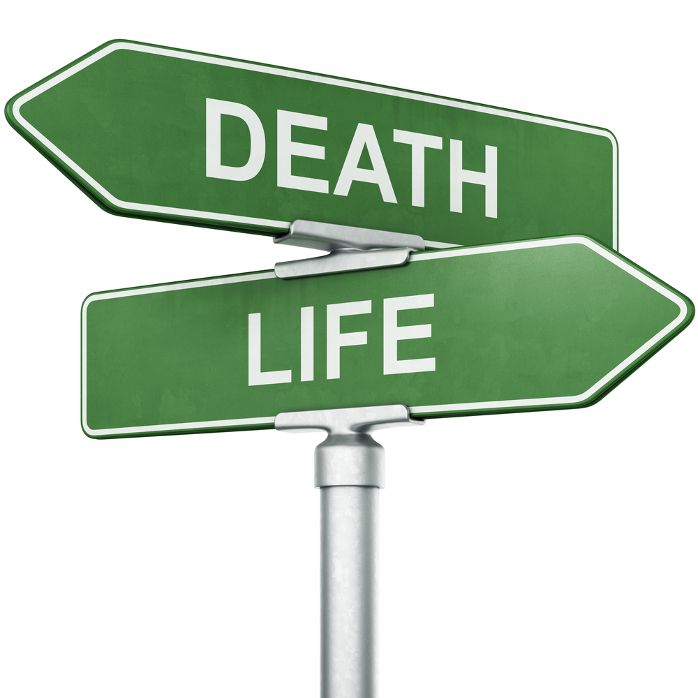 The Dance of Death in the Pirouette of Life - 1